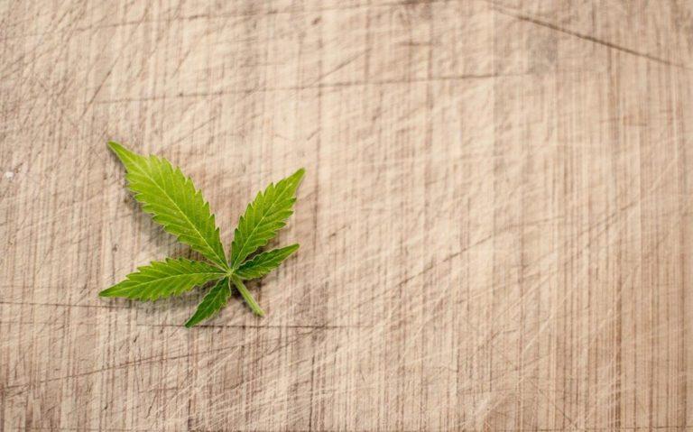 Zaopatrz się w dobre lampy do hodowli marihuany